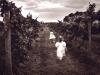 24-vineyard-escape
